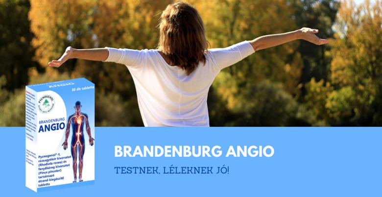 Brandenburg Angio
